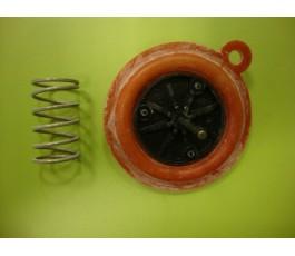 Kit membrana calentador vaillant original