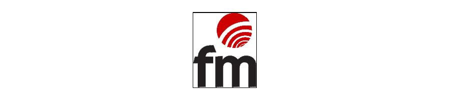 Recambios freidora FM